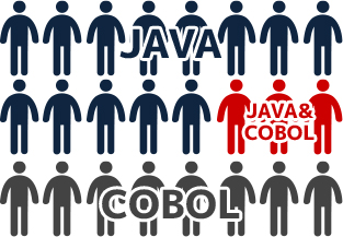 WINNER JAVA vs 146件 LOSER COBOL 6件